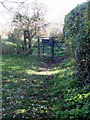 TL0633 : Footpath through Rushy Meade by Philip Jeffrey