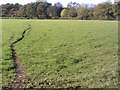 SP9101 : Path towards South Heath by Peter