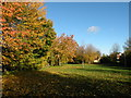 TL4956 : Autumn colour in Teversham by Keith Edkins