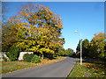 SU9383 : Green Lane, Burnham by Des Blenkinsopp