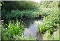 TQ5275 : River Cray by N Chadwick