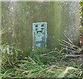 SE5016 : Flush bracket S1569 by Alan Murray-Rust
