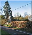 TL3266 : Conington: on School Lane by John Sutton