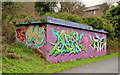 J3470 : Graffiti, Lagan towpath, Stranmillis, Belfast (December 2013) by Albert Bridge