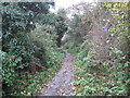 SU6993 : Watlington: Footpath towards Springfield Farm by Nigel Cox