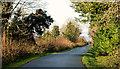 J4173 : The Comber Greenway, Dundonald (3) by Albert Bridge