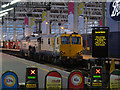 TQ3179 : Tamping train at Waterloo : Week 2