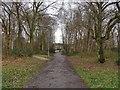 SU8561 : Path, Owlsmoor playing fields by Alan Hunt