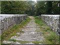 SX0557 : The Treffry Viaduct by Chris Gunns