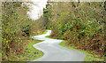 J4173 : The Comber Greenway, Dundonald (9) by Albert Bridge