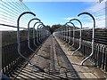 NZ0949 : Anti-suicide barriers on Hownsgill Viaduct : Week 6