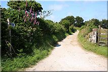 SW7241 : Bridleway near Carharrack by Graham Loveland