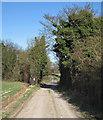 TL4346 : Thriplow: Mill Lane by John Sutton