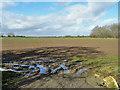 SP6307 : Field west of Waterperry Road by Robin Webster