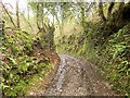 SX7558 : Green lane at Larcombe by Derek Harper