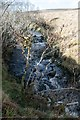 NR4352 : Small waterfall in Kintour River, Islay by Becky Williamson