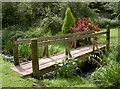 ST6965 : Bridge over the brook by Neil Owen