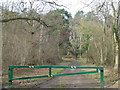 TF1102 : Track and barrier in Southey Wood by Richard Humphrey
