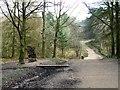 SE2244 : Chevin Forest Park [8] by Christine Johnstone