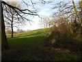 TM1645 : Looking towards the hill in Christchurch Park by Hamish Griffin