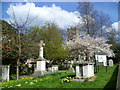 TQ6573 : Milton Churchyard in spring by Marathon