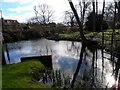 SU9298 : Pond near Little Missenden by Bikeboy