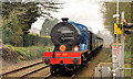 J3584 : Steam locomotive no 85, Jordanstown (March 2014) : Week 13