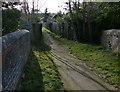 SP5798 : Footpath to Little Glen Road by Mat Fascione