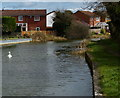 SP5798 : Houses along the Grand Union Canal by Mat Fascione