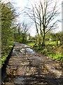 SD5910 : Arley Lane by Philip Platt