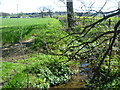 TQ4266 : Stream alongside Richmal Crompton Fields by Marathon