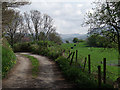 SJ9994 : Hague Road by Stephen Burton