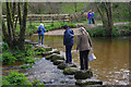 SX7483 : Stepping stones over the River Bovey by Stephen McKay