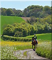 SU6484 : Morning ride in the springtime on Garsons Hill, Ipsden, Oxfordshire by Edmund Shaw