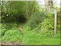 SX0672 : Public footpath towards Heligan Barton by Rod Allday