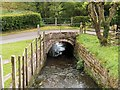 SJ4553 : Millrace, Stretton Mill by David Dixon