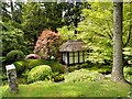 SJ7481 : Tatton Park Japanese Garden and Tea House by David Dixon