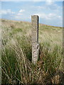 SE0116 : Marker post on water main by Humphrey Bolton