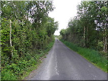G9828 : Road at Cordressogagh by Kenneth  Allen