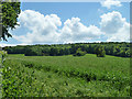 SP8910 : View south from Dancers End Lane by Robin Webster