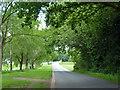 SP9901 : Ashridge Lane crosses Leyhill Common by Robin Webster