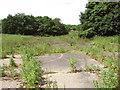 TG0915 : Aircraft dispersal site at RAF Attlebridge by Evelyn Simak