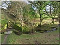 SE2206 : Tanyard brook. by steven ruffles