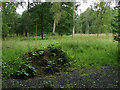 SU9271 : Woods off Hodge lane by Alan Hunt