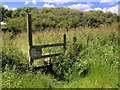 NZ3475 : Stile on Path to Nowhere by David Dixon