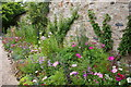 SW6031 : Herbaceous border at Godolphin House by Bill Boaden