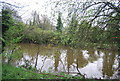 TR1434 : Royal Military Canal by N Chadwick