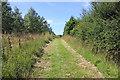 SJ5777 : Longacre Wood by Jeff Buck