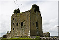 M4141 : Castles of Connacht: Anbally, Galway (2) by Mike Searle
