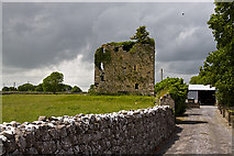M4142 : Castles of Connacht: Tawnaghmore, Galway (3) by Mike Searle